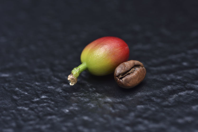 Cooked coffee fruit Black Background Coffee Coffee Fruit Food And Drink Freshness Red Black Background Close-up Coffee Beans Compare Control Day Food Food And Drink Fresh Freshness Fruit Healthy Eating Indoors  No People Nut - Food Red Fruit Ripe Still Life Table