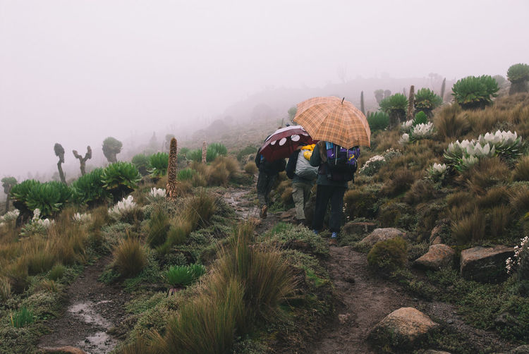 Rear View Of People With Umbrella Walking On Mountain Against Sky