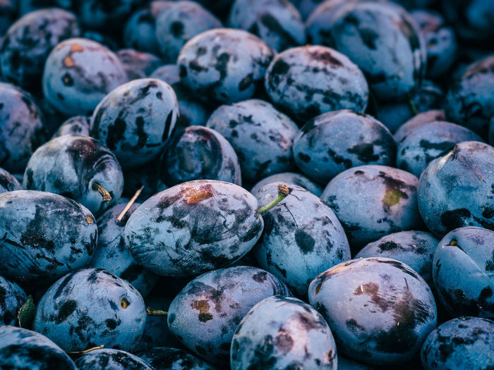Blue Close-up Farmers Market Food Fresh Fruits Harvest Healthy Healthy Eating Klingon Market Natural Organic Food Plum Prunes Purple