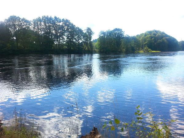 Water Reflections Lagan Nature