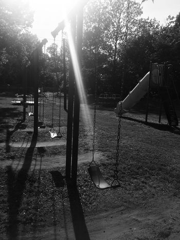 Summer Sun on a Swingset