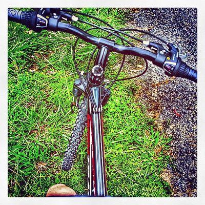 Sport Deporte Ahoraloshipsterestambiencorrenvayacarallo Bici bikeobiciqueeslomismoyademascastellano