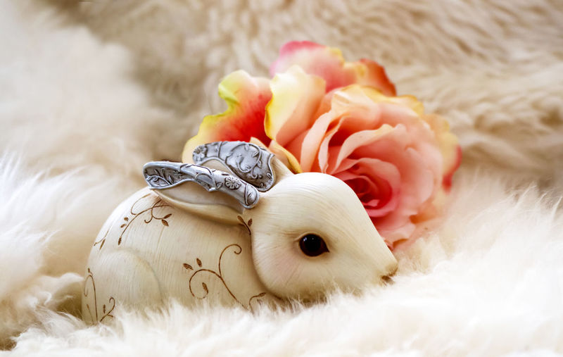 Close-Up Of Artificial Bunny And Rose On Fur During Easter