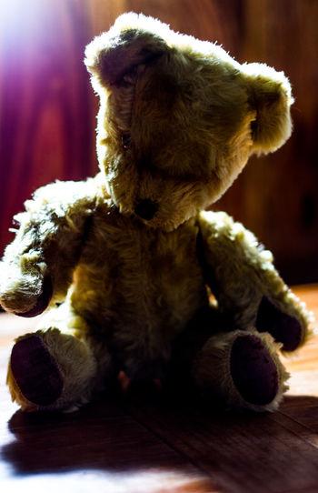 Old teddy bear.