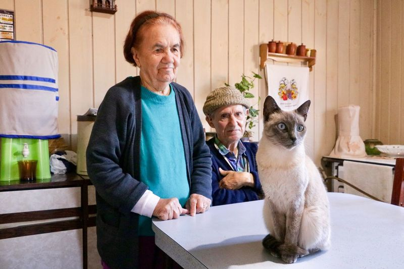Couple looking at cat in home