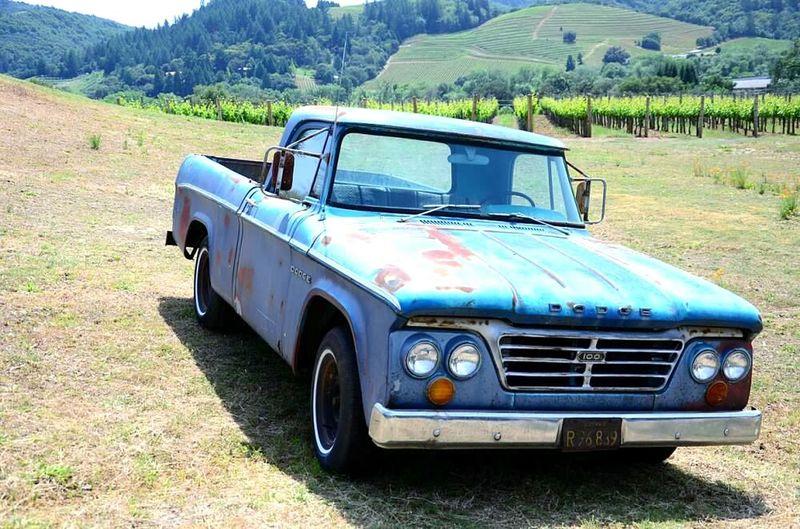 Vineyards  Cast Vineyard Sonoma Wine Country Dry Creek Valley Dodge Dodge Truck Classic Car