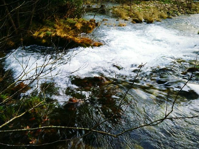 Galicia River Natural Space Natural Photography Natural Natural Green  SPAIN Naturaleza Green Green Space