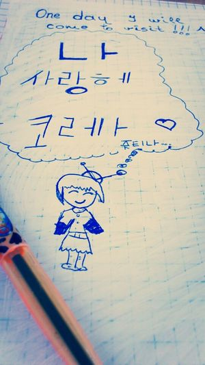 I Love Korea  , Visiting , Dream. i promise i will come one day!;)^^ sorry for mistakes if there is!! wrote it without google translate!!!^_^