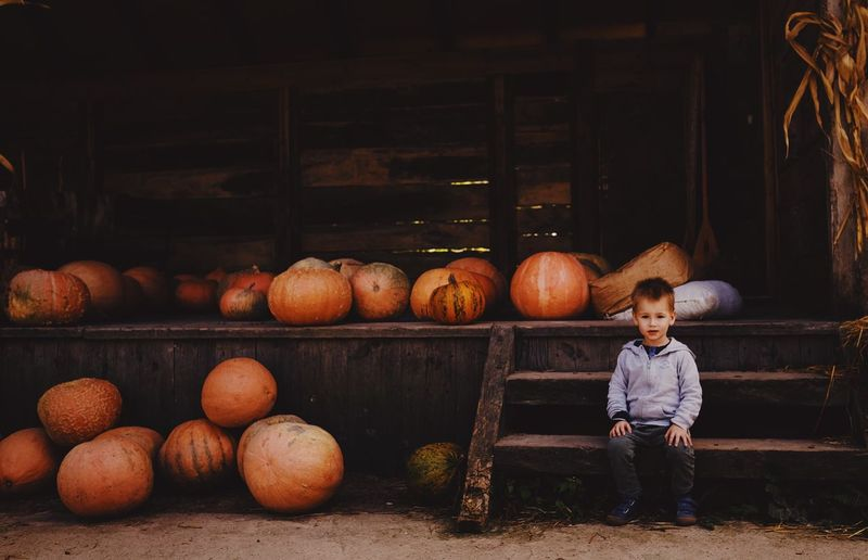 Portrait of boy sitting on steps against pumpkins
