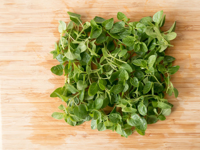 Close-up Directly Above Fresh Oregano Freshness Green Color High Angle View Leaf Marjolein Oregano Oregano Leaves Origanum Vulgare Table Wilde Marjolein Wood - Material