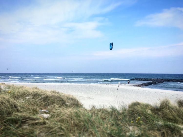 Kite Kitesurfing Kitesurf Kiteboard Kiteboarding Sea Beach Horizon Over Water Nature Water Beauty In Nature Sky Wave Day Cloud - Sky Sand Scenics Grass Tranquility Adventure Outdoors Vacations Sport No People Extreme Sports Done That.