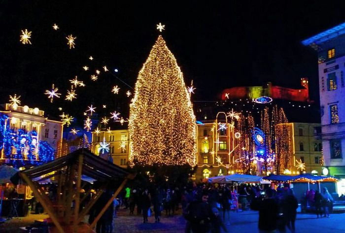 Showcase: December Christmas Tree Christmastime Square Castle Christmas Decorations Night Lights Architecture Mood BestPlaceToBe Rainbowflag Magic Dream