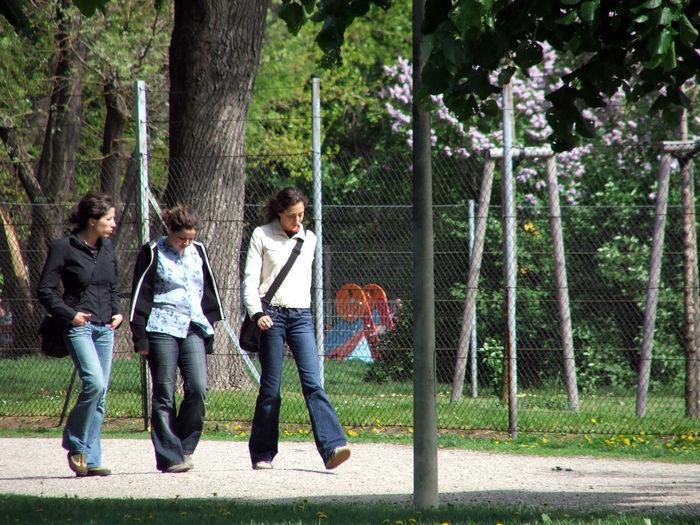 Full length of female friends standing on tree stump