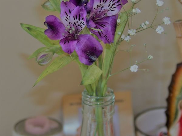 Lirios de campo Beauty In Nature Close-up Day Flower Flower Head Fragility Freshness Indoors  Nature No People Petal Plant Table Vase