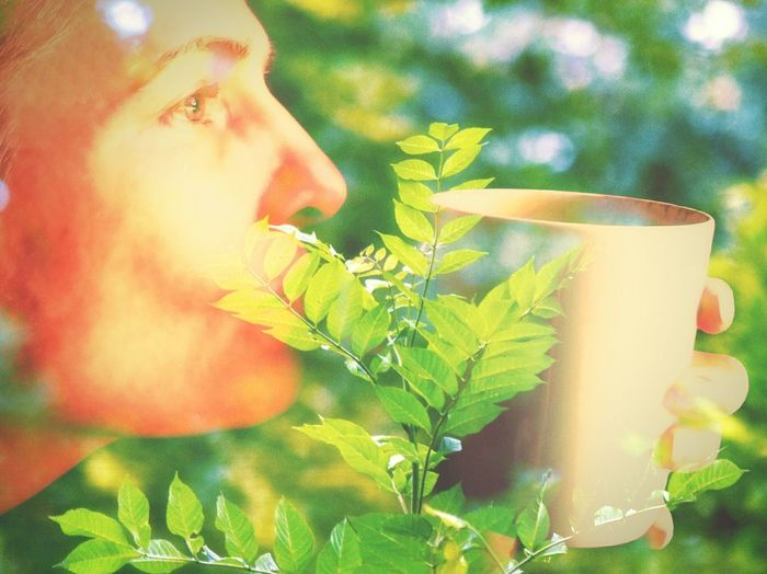 Home Is Where The Art Is Natural als ich das bild fertig hatte, musste ich unweigerlich an Apothekenumschau denken. 😀 Smile Drink Time Healthy Tea Or Coffee? Nature On Your Doorstep Behind The Trees Color Of Life