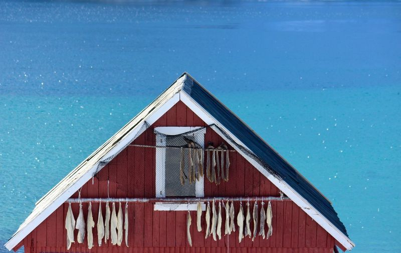 Wooden house on swimming pool by sea against blue sky