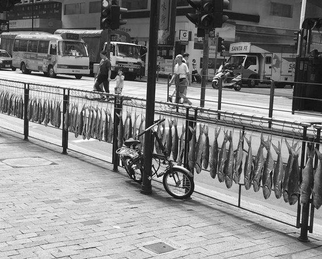 Tradition VS urban life. Fishes, drying at one of Hong Kong's busiest streets. And still, everybody thinks it's OK... B&w Street Photography Bicycle Blackandwhite Photography City Life Dry Fish Fishes Hanging Fishes How Do We Build The World? Pavement Polluted Pollution Pollution In My World Real People Showcase March Urban What Are We Eating? Here Belongs To Me Showing Imperfection Telling Stories Differently Envision The Future The Street Photographer - 2016 EyeEm Awards Live Love Shop TakeoverContrast