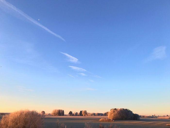 EyeEm Selects Felder Winter Wonderland Himmel Morgenstimmung