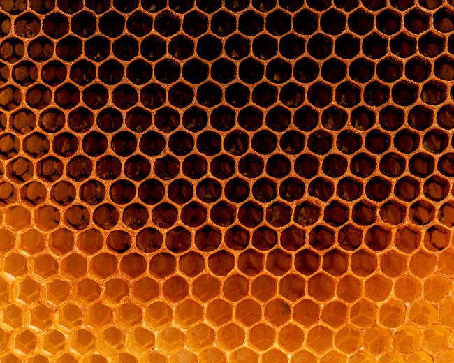 Full frame shot of beehive