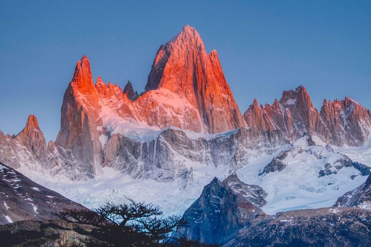 Fitz Roy Mountain Sunrise Fitz Roy Patagonia Sky Beauty In Nature Nature Mountain Scenics - Nature Winter Snow Mountain Range Environment Landscape Cold Temperature Land Panoramic Non-urban Scene Outdoors 17.62° My Best Photo