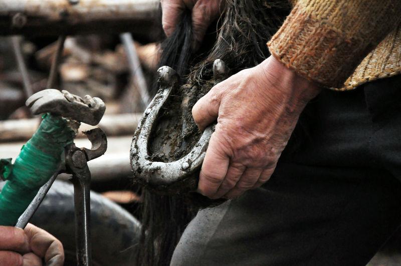 Cropped image of men removing horseshoe