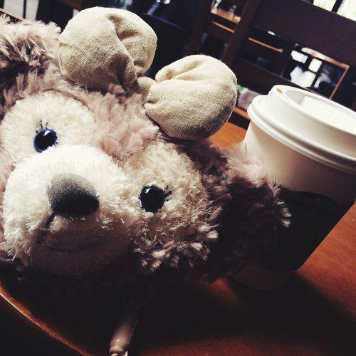 Starbucks ShellieMay Holiday