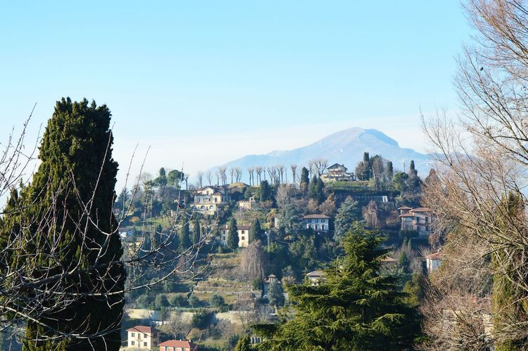 Beautiful Landscape Bergamo Bergamo <3 Bergamo Alta Bergamo Alta Citta Bergamo City Bergamo High City View Bergamo Italia Bergamo ıtalia Bergamo, Italia Bergamoalta Cameratree Castle Ruin Detail Church Flags In The Wind  Funicular Houses And Windows Italia Italy Italy❤️ Italy🇮🇹 Point Of View Pointofview Tower Viewpoint
