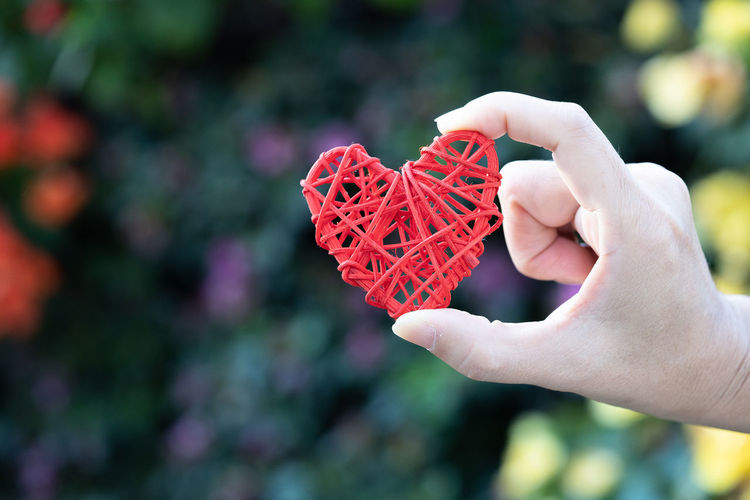 hand hold heart shape in garden Human Hand Hand Human Body Part Holding One Person Red Focus On Foreground Real People Day Close-up Personal Perspective Body Part Lifestyles Unrecognizable Person Leisure Activity Celebration Finger Nature Human Finger Human Limb
