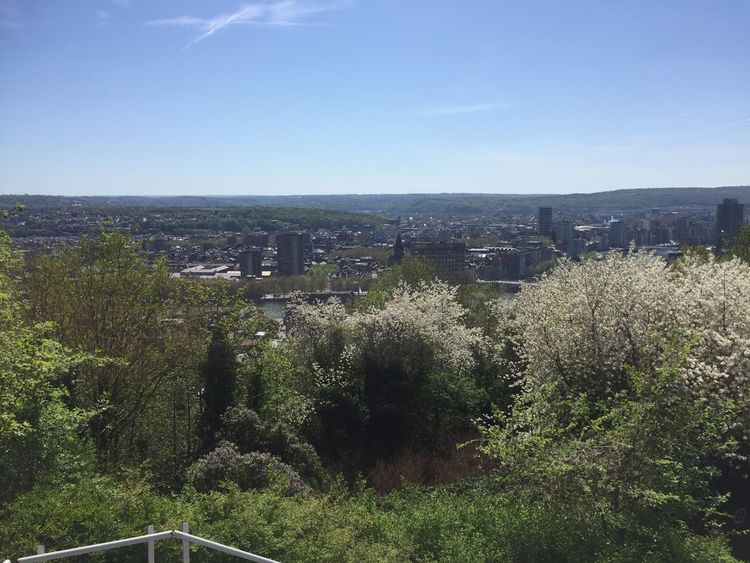 19/04/2018 Belgium Liège Luik Plant Sky Nature Growth Day Beauty In Nature Tree Environment Field Landscape Outdoors Tranquil Scene Water Green Color Scenics - Nature No People Sunlight Tranquility Land