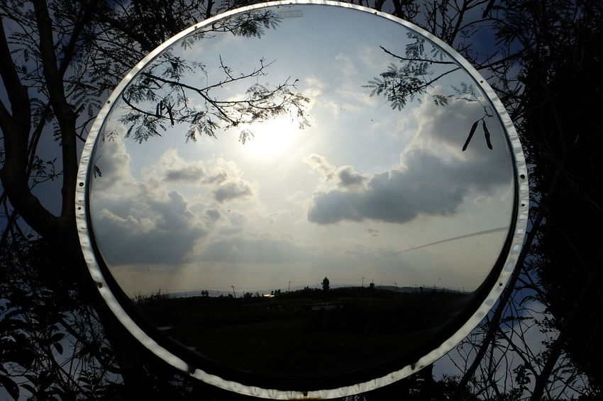 Mirror Mirror Reflection Sun Sunlight Reflection Photography Sky And Clouds Tree And Sky Tree Branches Minimalistic Nature Beauty In Nature Outdoors Day Convex Mirror