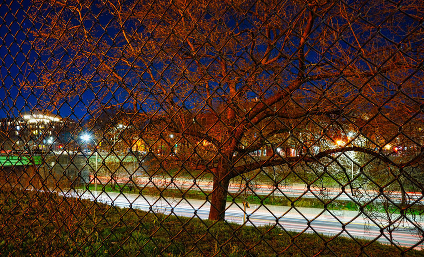 Trees by illuminated fence against sky at night