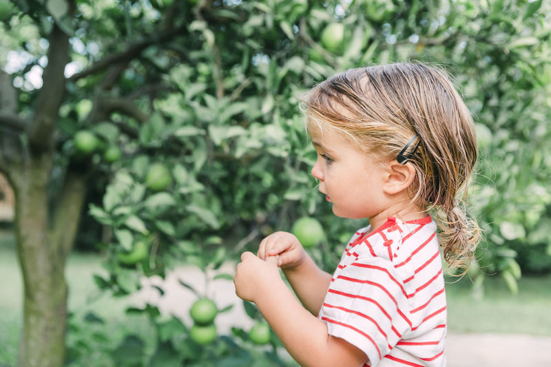 Toddler girl looking at orange tree - Cirali, Antalya Province, Turkey Girl Toddler  Toddlerlife Germany Caucasian Agriculture Hair Clip Botany Cheerful Close-up Curiosity Education Enjoyment Fruit Fruit Tree Orange Tree Garden Happiness Headshot Head And Shoulders Arms Raised Long Hair Looking Away Nature Exploring Orchard Orange - Fruit Playing Ponytail Portrait Preschooler Side View Profile View Standing Summer T-shirt Tree Leaf Waist Up Watching Wet Hair Yard Admiration Farm Life Türkiye Turkey Vacations Ripe Fruit Healthy Eating Vitamin C Child Childhood One Person Innocence Plant Real People Females Hair Girls Cute Focus On Foreground Leisure Activity Day Lifestyles Striped Casual Clothing Women Blond Hair Looking Outdoors Hairstyle