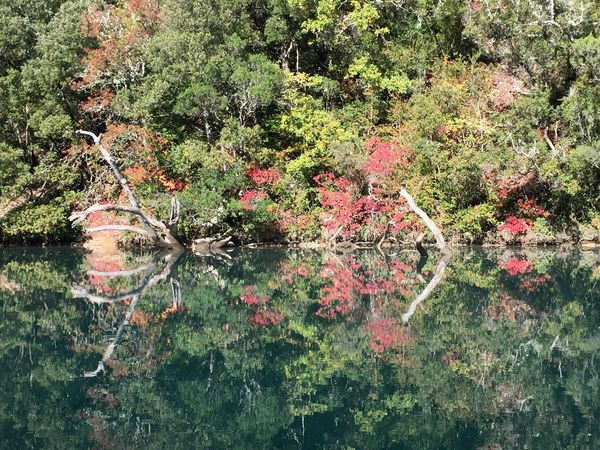 Nature Outdoors No People Water Beauty In Nature Reflection Effet Miroir