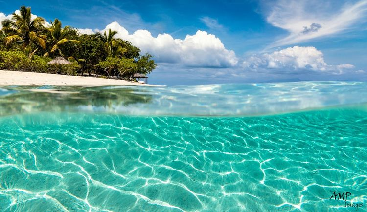 Navini Island, Fiji. Ampimages Travel Photography Beachphotography Palmtreeporn Relaxing Holiday Enjoying Life Island Tropical Luxuryhotel Beautiful Surroundings