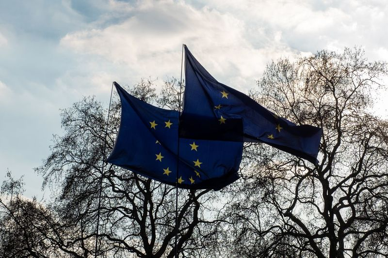 Anti Brexit EU Flags outside Houses of Parliament Sky Low Angle View Cloud - Sky Flag Patriotism No People Nature Tree Outdoors Plant Leaf Flying Day