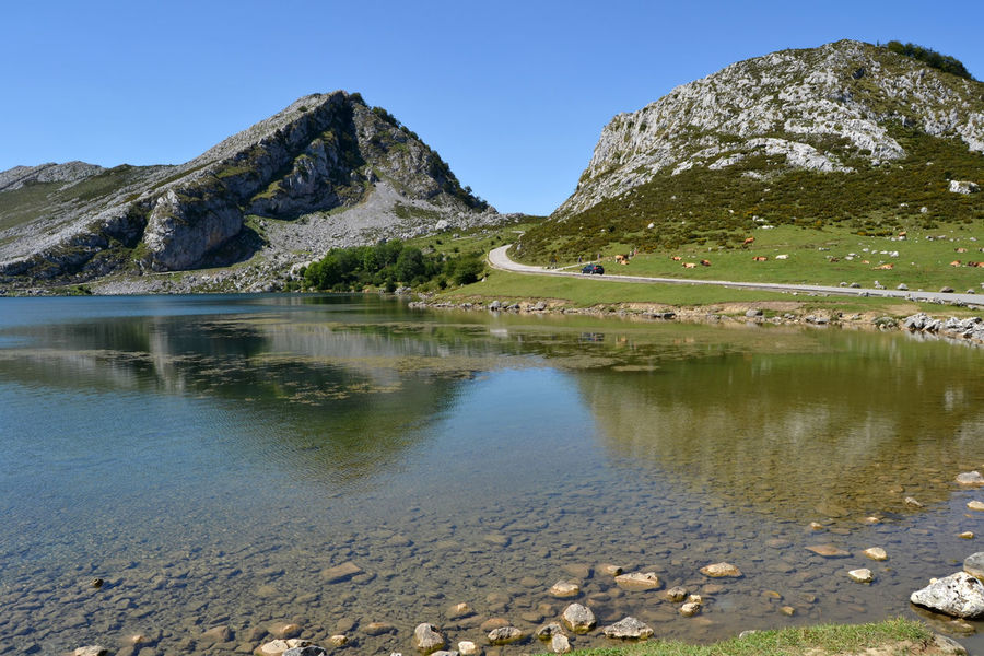 Landscape of Enol Lake in Covadonga Lakes, Asturias - Spain Asturias Blue Clear Sky Covadonga Enol Lake Lago Enol Lagos De Covadonga Lake Lakes  Landscape Mountain Mountain Range Nature Outdoors Peak Picos De Europa Reflection Road Scenics Tourism Trail Tranquil Scene Travel View Water
