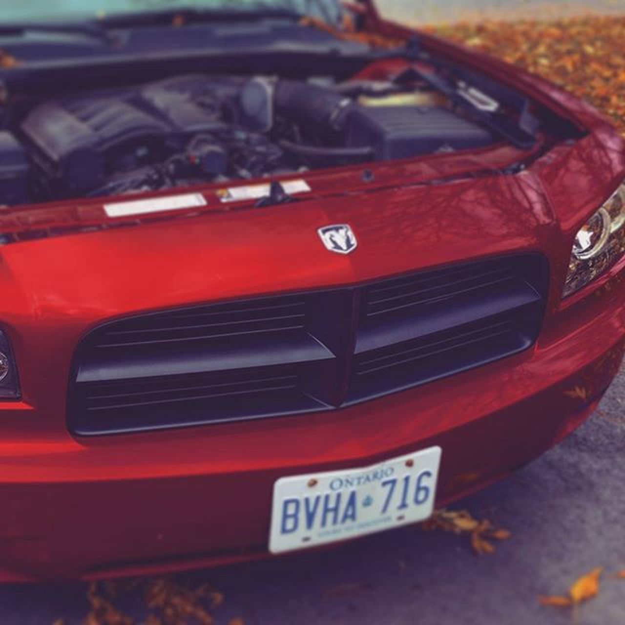 car, red, transportation, land vehicle, no people, day, close-up, outdoors