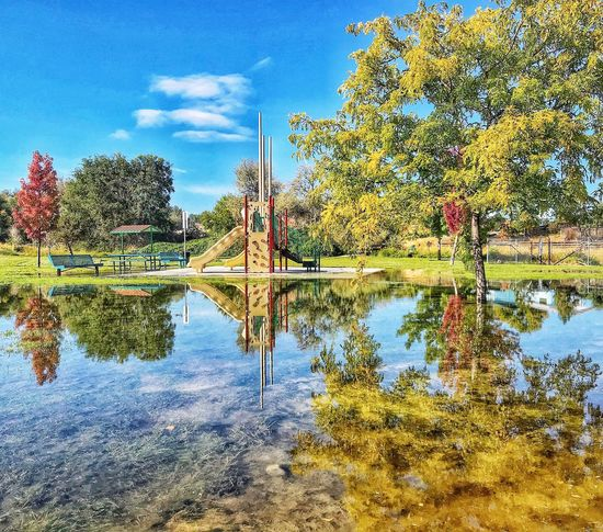 Reflection at a city park Tree Reflection Nature Water Beauty In Nature Sky Tranquil Scene Day Tranquility Outdoors Standing Water Scenics No People Growth Lake