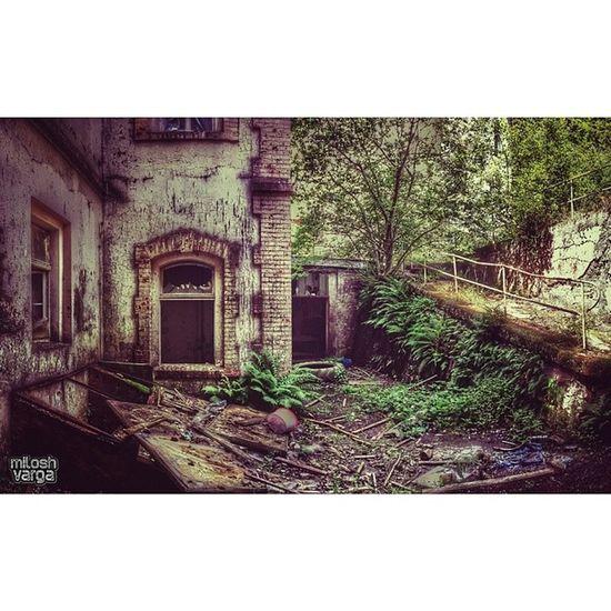 proud member of ----------- ?RSA? ----------- -MAIN -PreciousJunk -Nature -Trees -Yards -Doors&Windows -Dark -Light -Streetview -------------------- ?Visionaries? -------------------- -MAIN -urbex -hdr -noir . ♣admin RSA_BnW™♣ . creator: germandecay fadingdoors skylikehoney eto_okno . proud to be member of ChurchMasters Nexus_Soldiers Urbex_Rebels RottenFeed UrbexWorld SFX_decay IGdungeon SYN_mob
