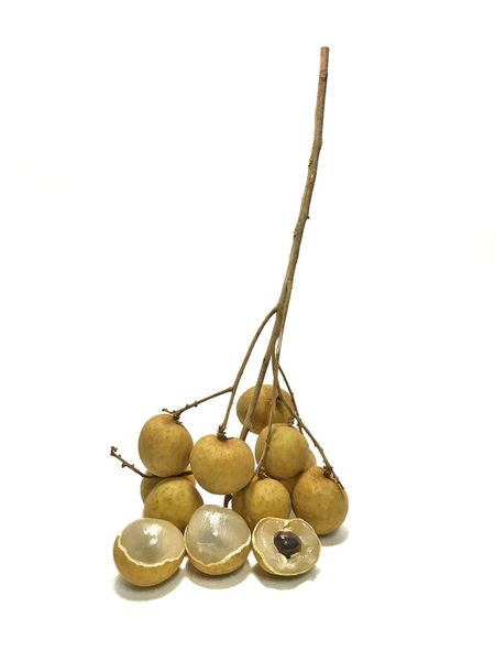 White Background Gold Colored Studio Shot Food And Drink Gold No People Food Freshness Close-up Longan Fruit Fruit Isolated Isolated Nature Agriculture Seed Sweet Food And Drink Freshness Healthy Eating Thailand Sweet Fruit