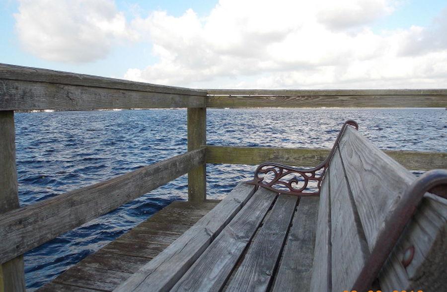 Riverfront Water_collection Coastal Carolina EyeEm Best Shots - Nature
