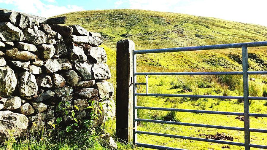 Hillside Hilltop Walls Stone Walls Dry Stone Wall Farmland Gates Scenery Shots Hills Hello World