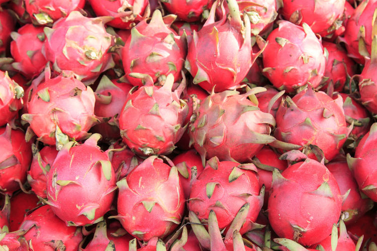Dragon fruit bakground Abundance Backgrounds Beauty In Nature Close-up Dragon Dragonfly Flower Flower Head Food Fragility Freshness Fruit Full Frame Growth Large Group Of Objects Market Nature No People Petal Pink Color Red Taiwan Taiwan Food Taiwanese Vegetables