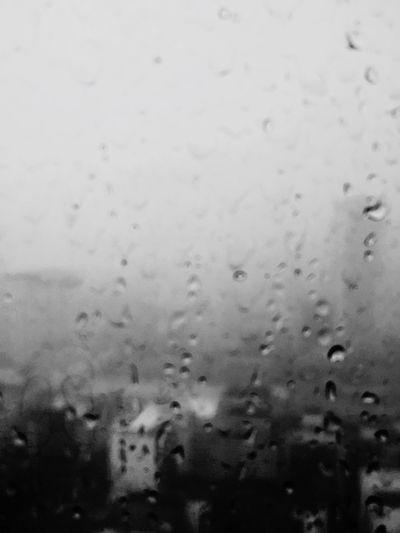 ⛈ Rainy Day