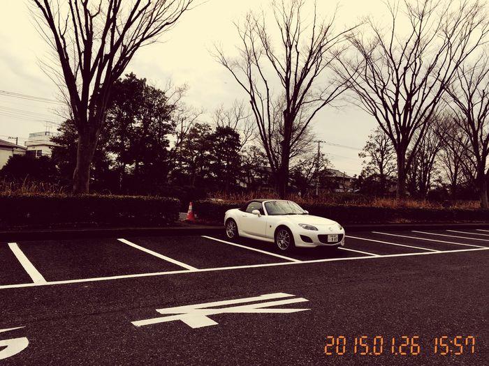 ...NOGAWA-Park TOKYO http://youtu.be/WHNVkKxUG9Q MazdaMaita Roadster