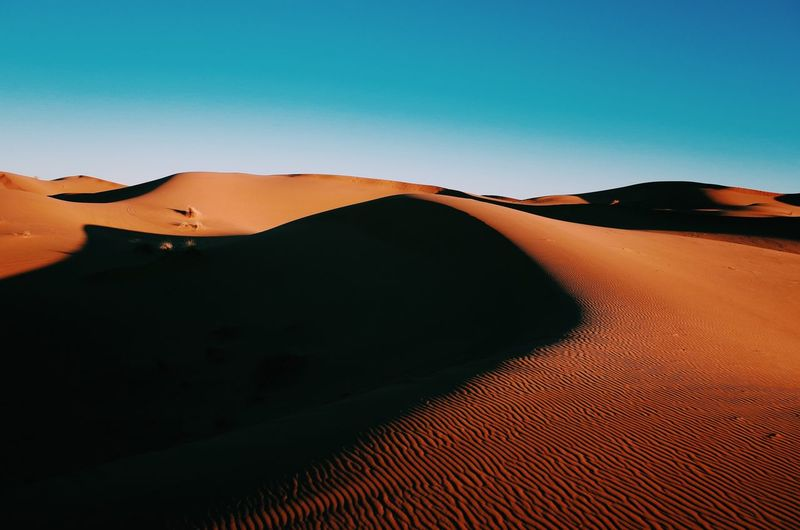 Sand Dune Desert Arid Climate Nature Tranquil Scene Scenics Outdoors Sand Landscape Beauty In Nature Tranquility Idyllic Clear Sky No People Sky Day Desert Sunset