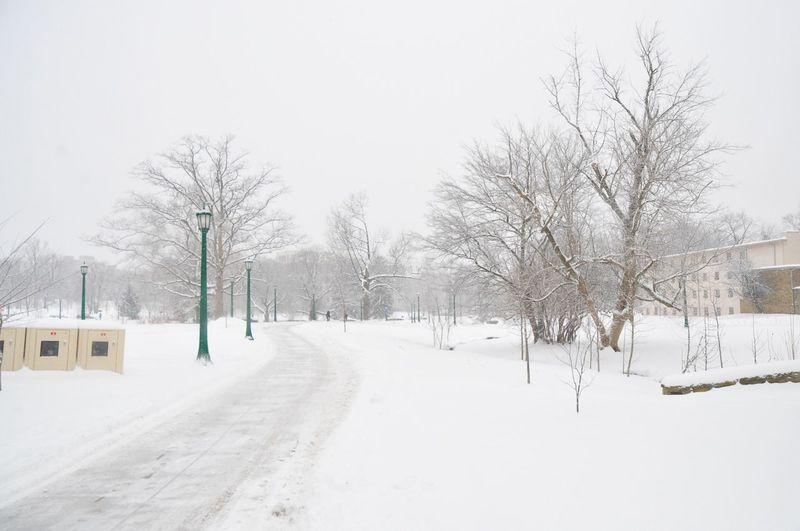 Winter at Indiana University Indiana Bloomington Iu First Eyeem Photo