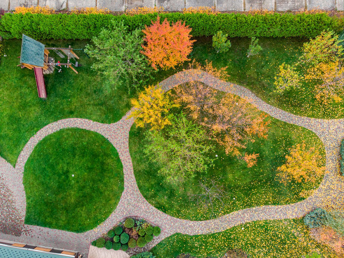 High angle view of plants on landscape during autumn