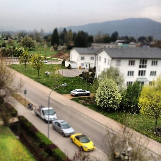 #tilt #shift #tiltshift #audi #cars #tree Tree Shift Cars Audi Tilt Tiltshift Rheinfelden Benyeahmin Benyeahminpop