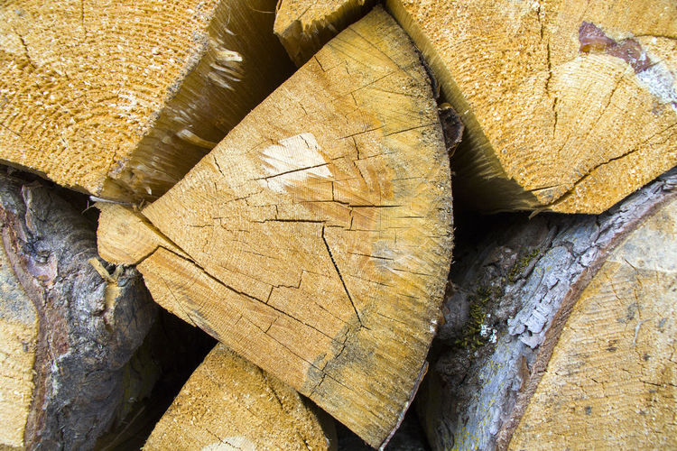 Firewood and wooden background photo. texture of the piled wood. pattern of the wood.